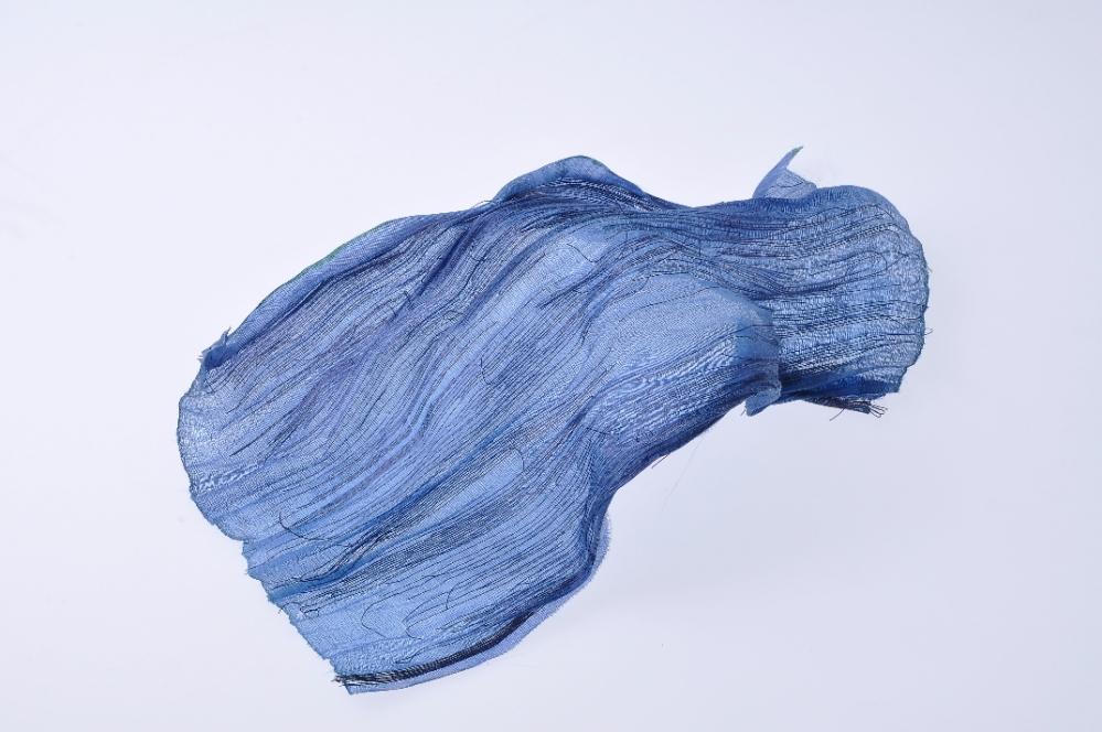 échantillon BLUE_1